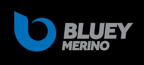 Bluey-Logo-Landscape-Web-Transparent