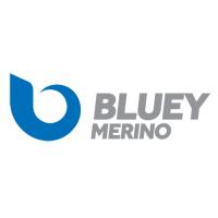 Bluey-Logo-Landscape-sq